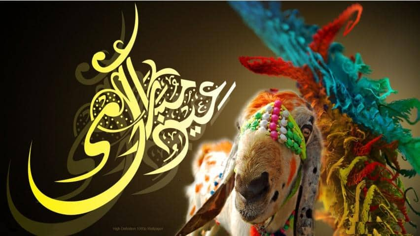 Bakra-Eid-Mubarak-Hd-Wallpapers