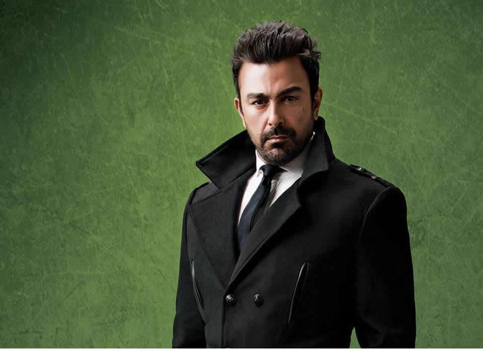Top 10 Highest Earning Pakistani Celebrities | Reviewit pk