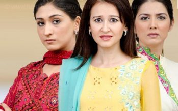 Bari Appa Episode 13 – Zubaida in Action.