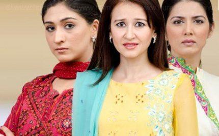 Bari Appa Episode 14 – Typicality of Zubaida revealed