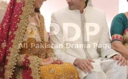 Shehzad Sheikh-Happily Married! Snaps!