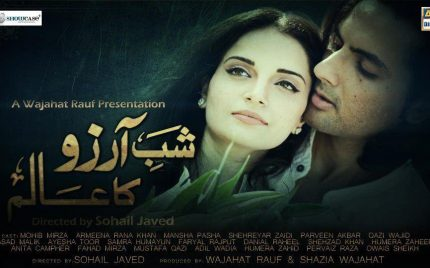 """Mohib Mirza to be seen in """"Shab-e Arzoo ka Aalim""""!"""