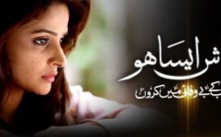 Kaash Aisa Ho Episode 17 – A New Character