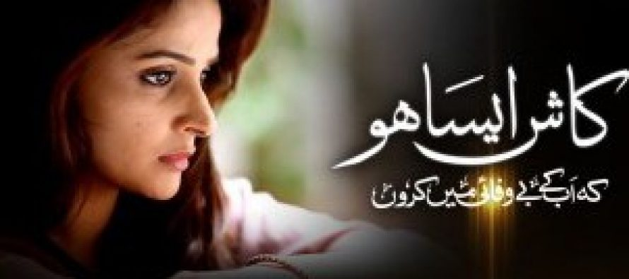 Kaash Aisa Ho Episode 17 – A New Character