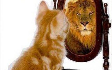 Self-Confidence – Where It Comes From And How Important It Is