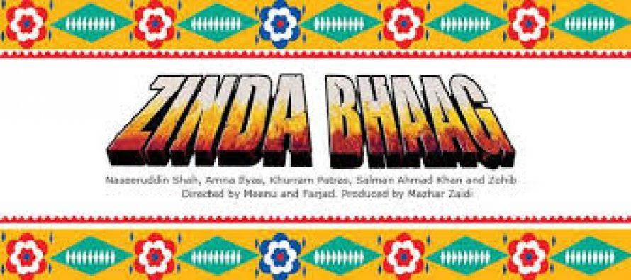 Pakistani Movie 'Zinda Bhaag' Nominated for Oscars!