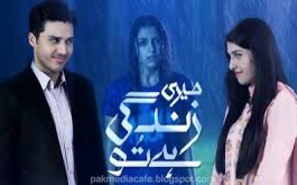 Meri Zindage Hai Tu – Aman taking over all charges of Meenu