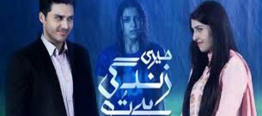 Meri Zindage Hai Tu – Aman taking over all charges of Meenu