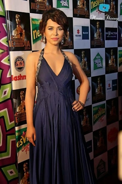4th-Pakistan-Media-Awards-Red-Carpet-Collection-Images-9