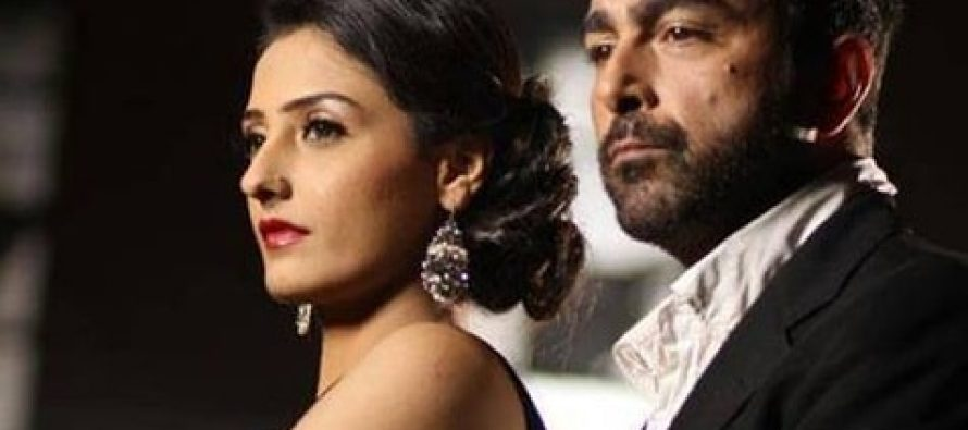 Pakistani Movies to Look Forward to in 2014!