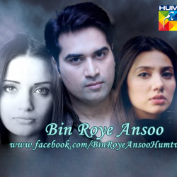 Bin Roye Ansoo Pictures 17 250x250