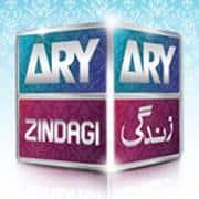 ARY Zin