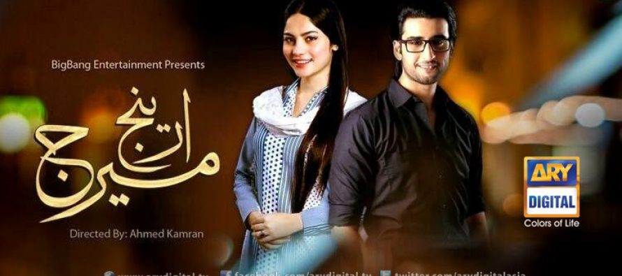 Arrange Marriage By ARY Digital