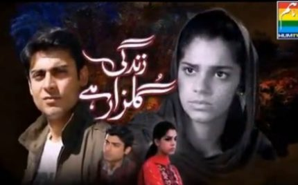 Pakistani Dramas Get Overwhelming Response In India