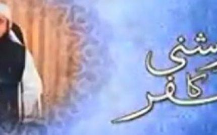 """Roshni Ka Safar"" Is A Mega Hit"