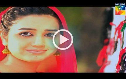 Ishq Ibadat (عشق عبادت) on Hum TV