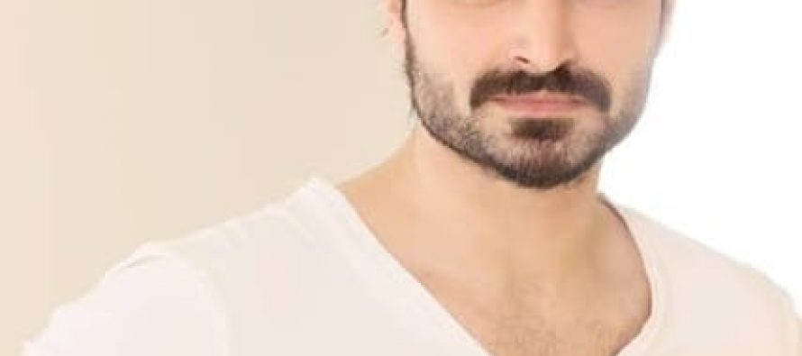 """""""I have reached that stage of maturity where playfulness loses appeal for you"""" – Hamza Ali Abbasi"""