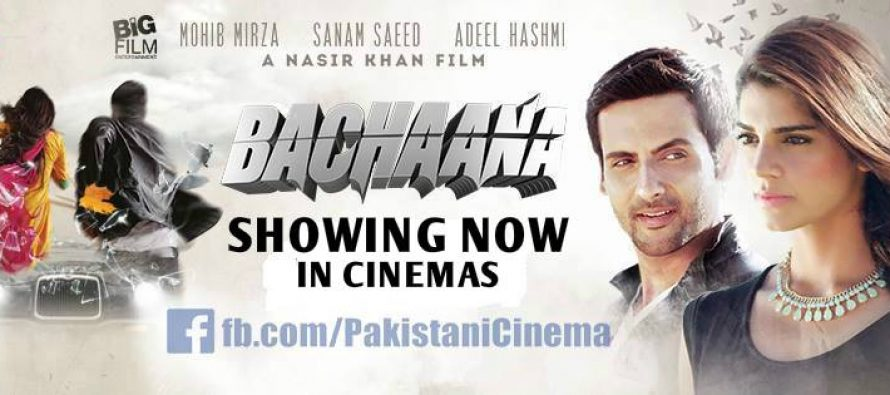 Bachaana(بچانا)'s box office report