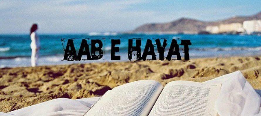Aab-e-Hayat: Episodes 14-18