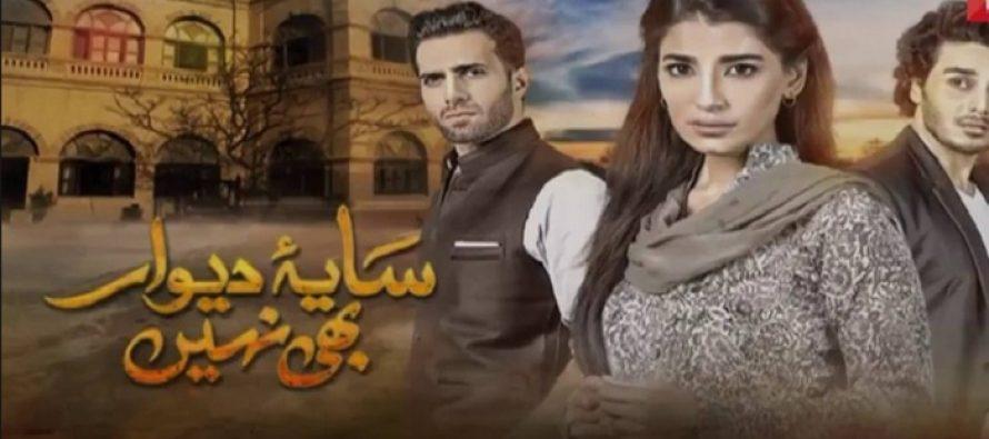 Saya-e-Dewar Bhi Nahin Episode 3 – Tough Choices Ahead