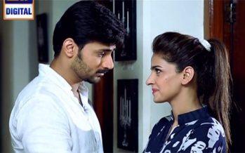 Besharam Episode 20 – Sheer Brilliance!