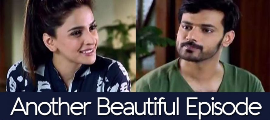 Besharam Episode 19 – Another Beautiful Episode!