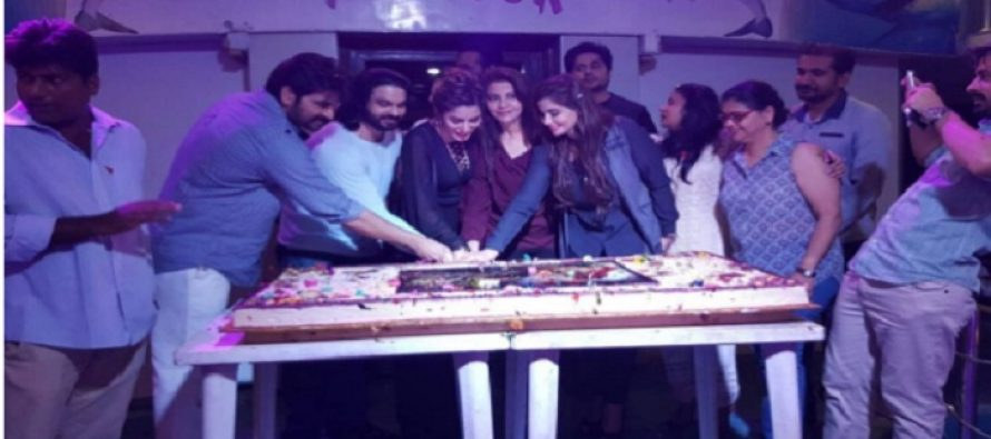 Pictures of the Success Party of Drama Dil Lagi