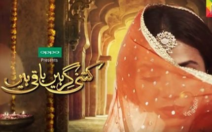 Kitni Girhain Baqi Hai- A quick peek at some of the episodes that stood out