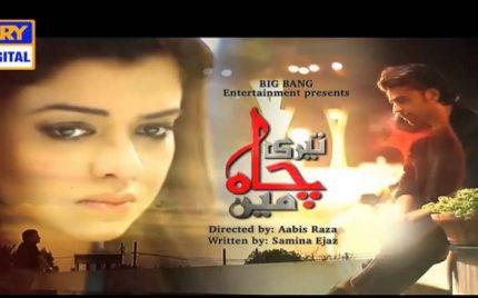 Teri Chah Mein Last Episode Review – Khatam Shud!