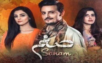 Sanam Episode 20 Review – Hum (Viewers) Itne Seedhay Kyun Hain!