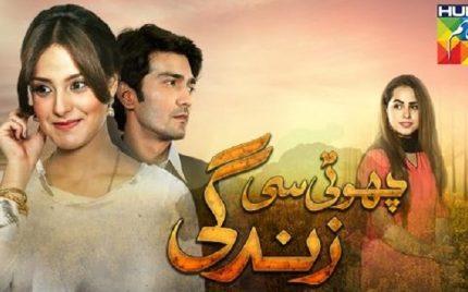 Choti Si Zindagi Episode 18 Review