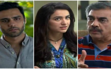 Yeh Raha Dil Episode 7 Review – Adorable!