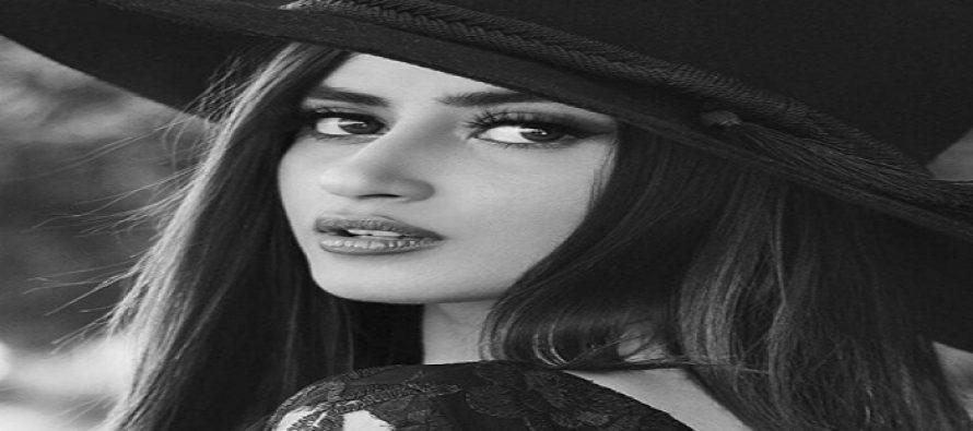 Upcoming drama Woh Yaqeen Ka Naya Safar – Sajal Ali Spills The Beans