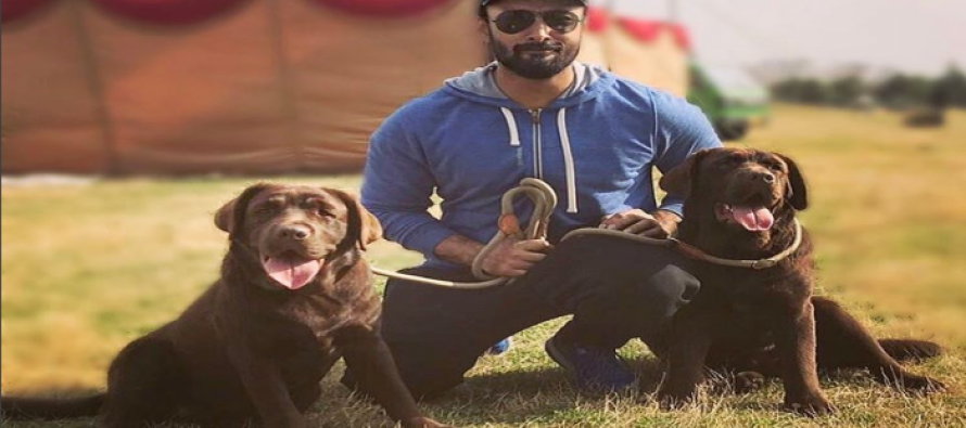 3 celebrities and their cutest pets