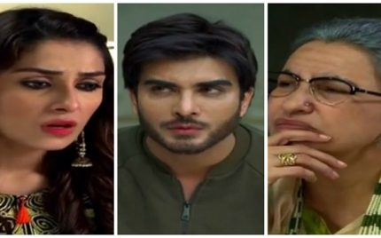 Mohabbat Tumse Nafrat Hai Episode 3 Review – Interesting Family Ties