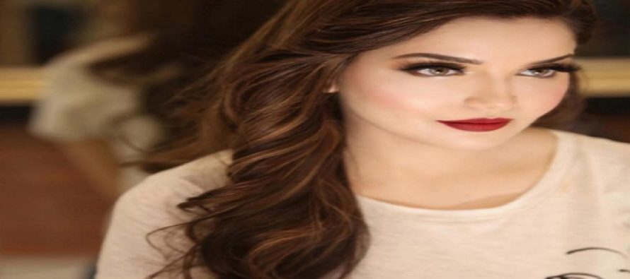 Armeena Rana Khan Stirs A Debate On Eastern & Western Attire!