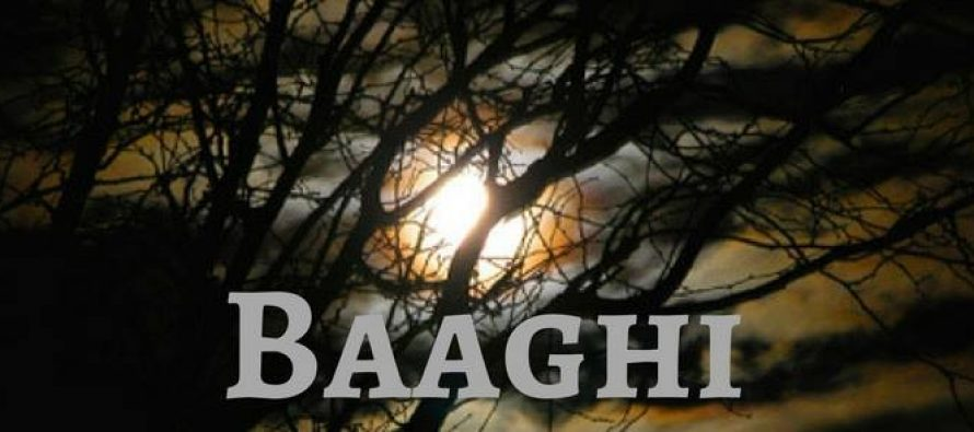 Baaghi's teaser will leave you awestruck!