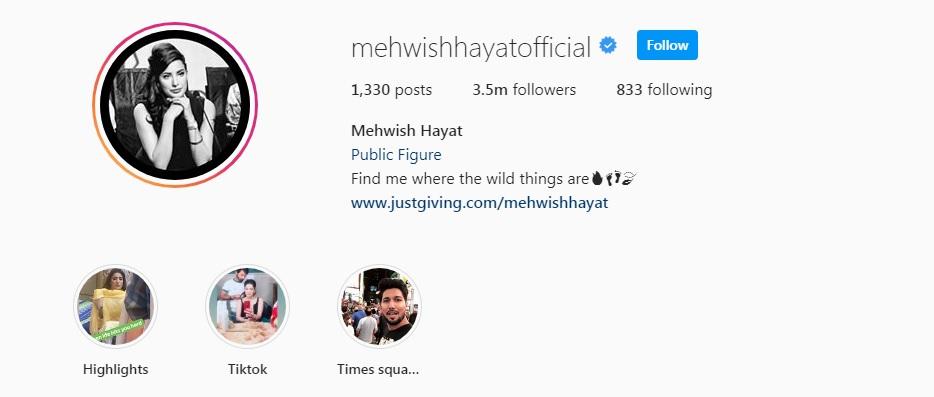Mehwish Hayat - Biography, Age, Dramas, Songs, Brother