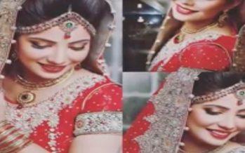 Wedding Pictures Of Fabiha Sherazi – The Girl Who Broke The Internet!