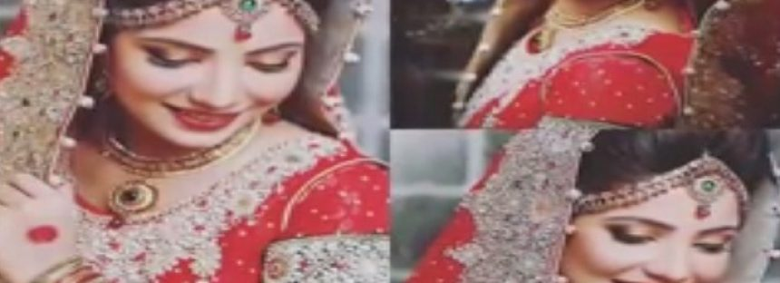 Wedding Pictures Of Fabiha Sherazi – The Girl Who Broke The Internet!