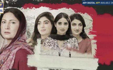 Mubarak Ho Beti Hui Hai Episode 14 Review – Feminism Gone Wrong