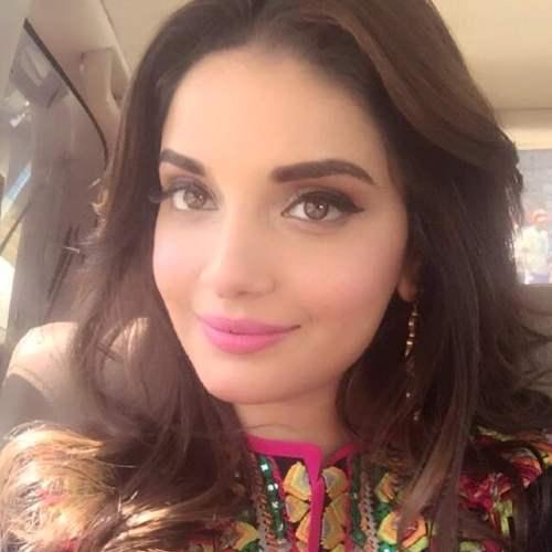 Model actress armeena rana khan birthday celebration pics 2016 2