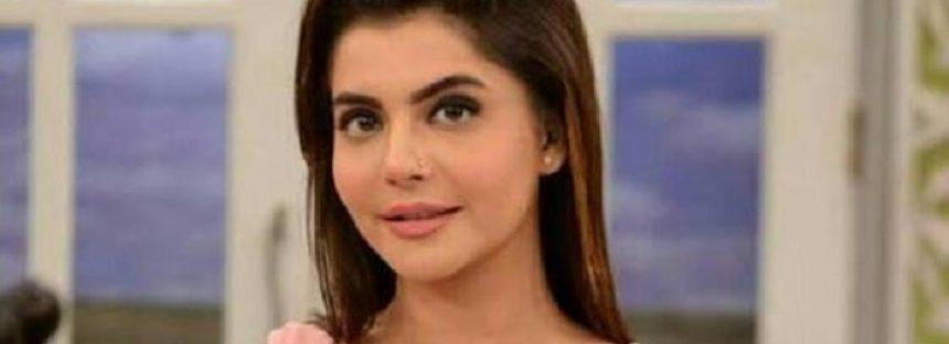 Nida Yasir – Biography, Age, Education, Family, Husband, Dramas