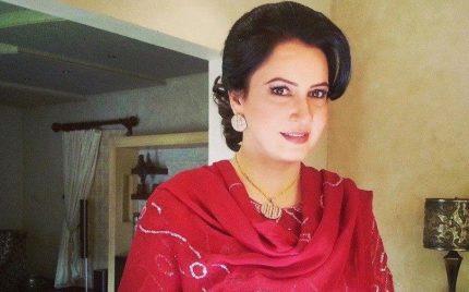 Saba Faisal's Daughter Is Also An Actress!