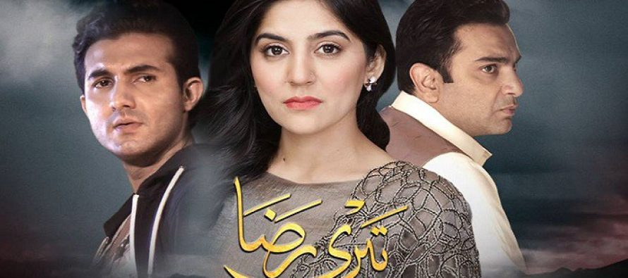 Teri Raza Episode 9 & 10 Review – Ridiculous!