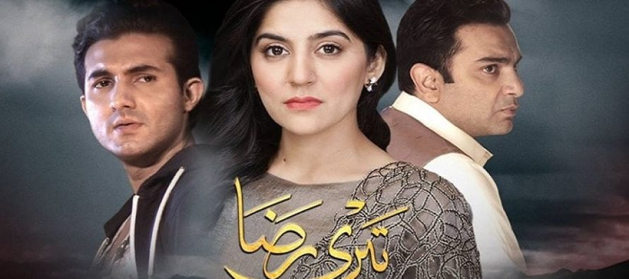 Teri Raza Episode 22 Review – What Was Sanam Baloch Thinking?