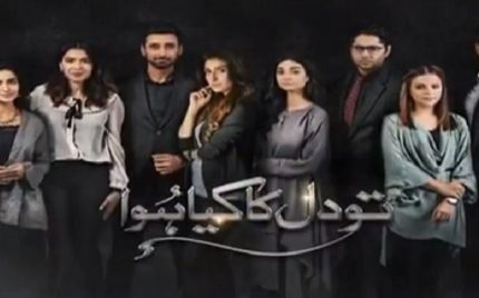 Tau Dil Ka Kya Hua Episode 25 Review – Brilliantly Executed