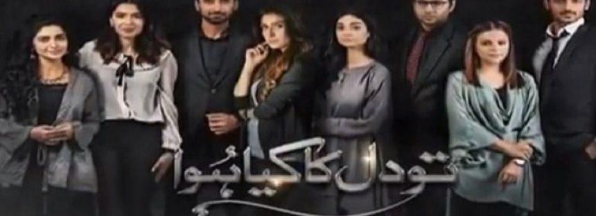 Tau Dil Ka Kya Hua Episode 20 Review – Mysteries!