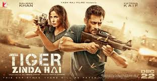 Tiger Zinda Hai Banned In Pakistan!