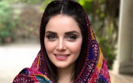 """We Hope To Educate Against Illegal Immigration"", Armeena Khan"
